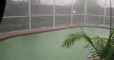 Tiếng mưa rơi | Rain sounds